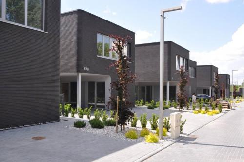 Lazunu namai (12)