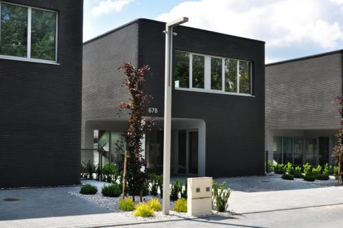 Lazunu namai (14)