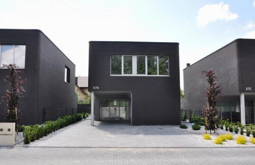 Lazunu namai (15)